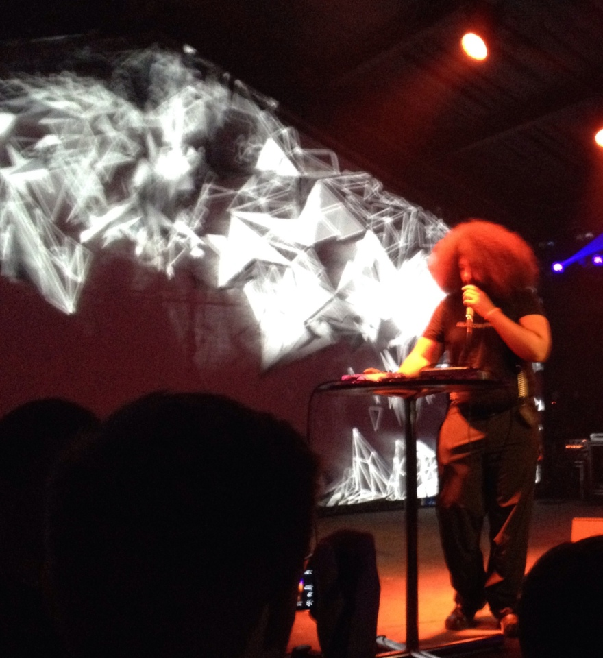 2014 - SXSW - Reggie Watts
