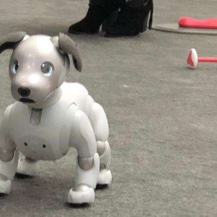 Robotics - Sony dog 2