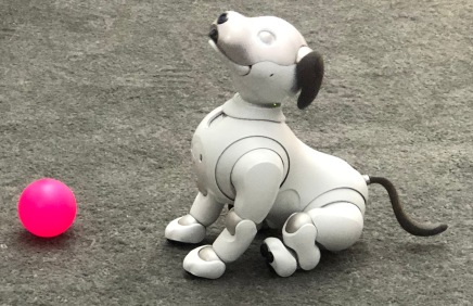 Robotics - Sony dog 4