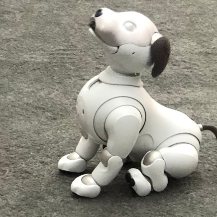 Robotics - Sony dog 4